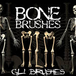 bone brushes