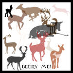 deery me brush set