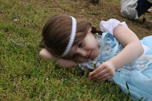 Stock princess 4