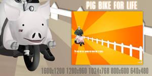 Pig bike for life