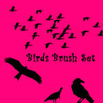 Birds Brush Set
