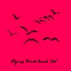 Flying Birds Brush Set