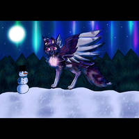Timelapse Video SS Owline