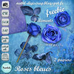 Blue Roses bleues PNG :Stock: