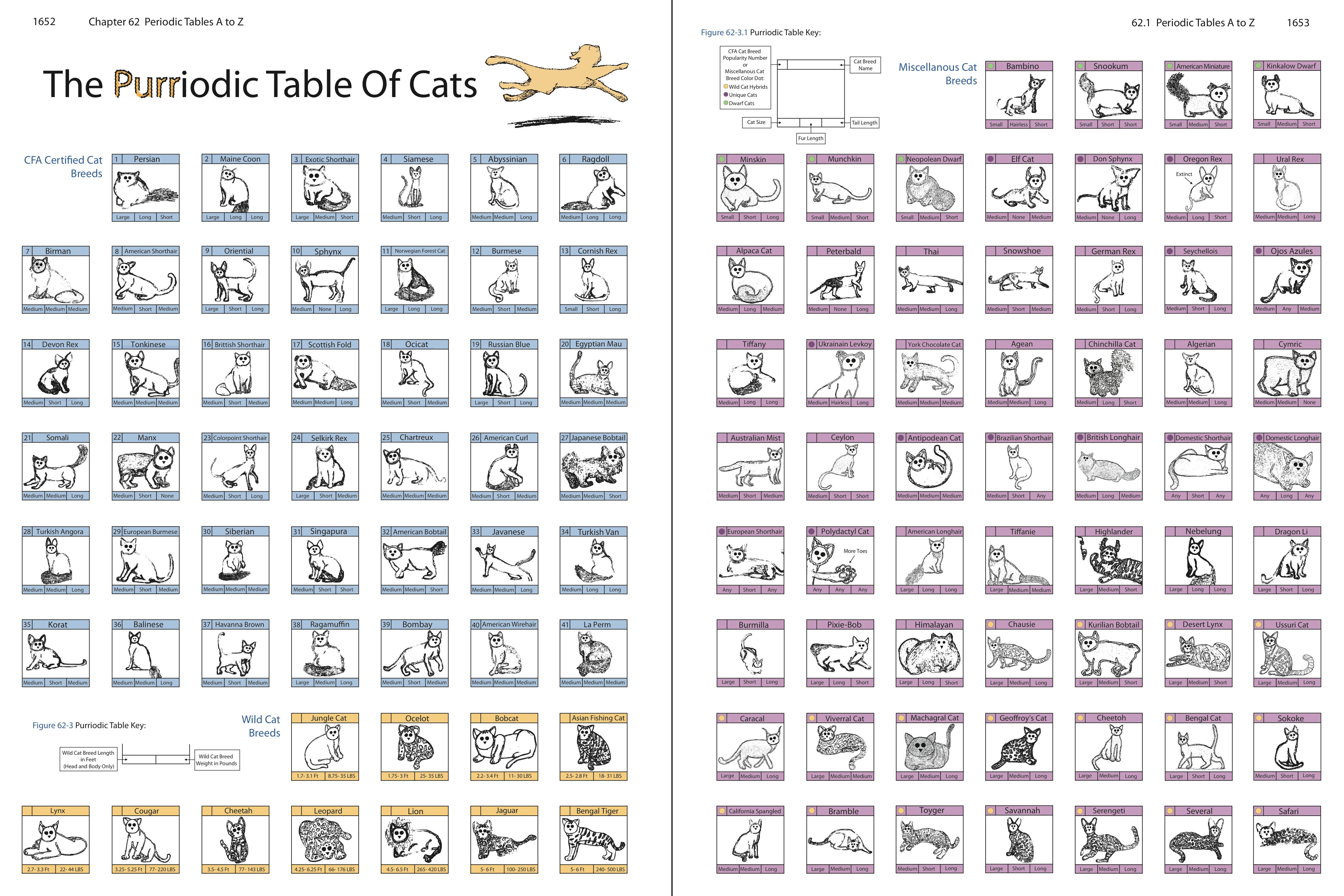 New periodic table cat names names periodic table cat table cats purriodic deviantart on by the macabre of dancer urtaz Gallery