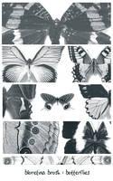 bluretina brush:butterflies by bluretina-stock