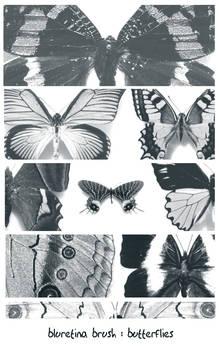 bluretina brush:butterflies
