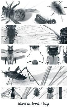 bluretina brush:bugs