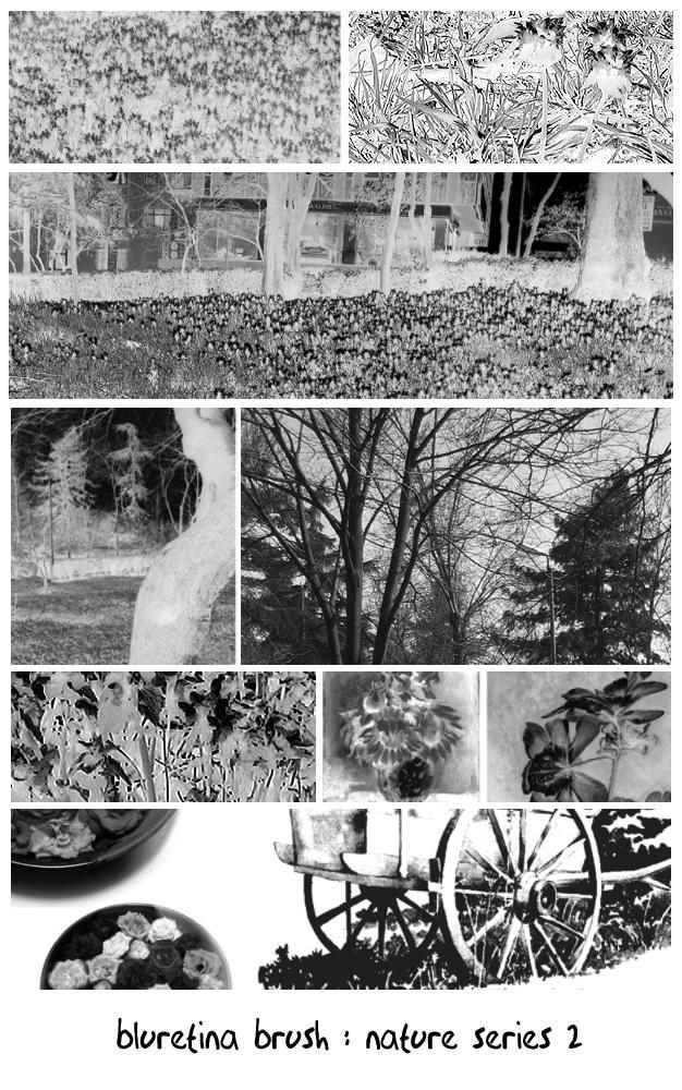 bluretina brush:nature series2 by bluretina-stock