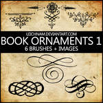 Book Ornaments Brushes 1
