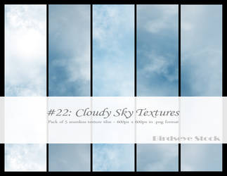 Cloudy Sky Textures by BirdseyeStock