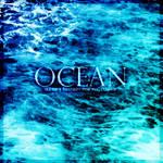 Ocean Brushes