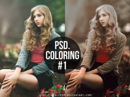 PSD coloring #1 by Seelie08