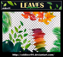Leaves Png's Pack | ColdLove98 by ColdLove98