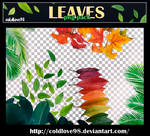 Leaves Png's Pack | ColdLove98