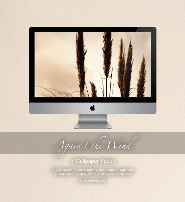 Against the Wind WP by CayaStrife