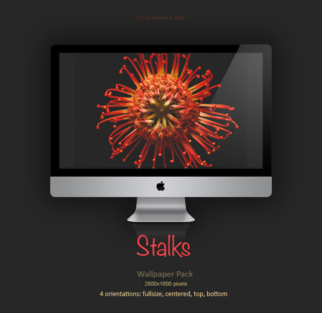 Stalks *Wallpaper Pack* by CayaStrife