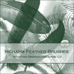 Ischarm Feather Brushes