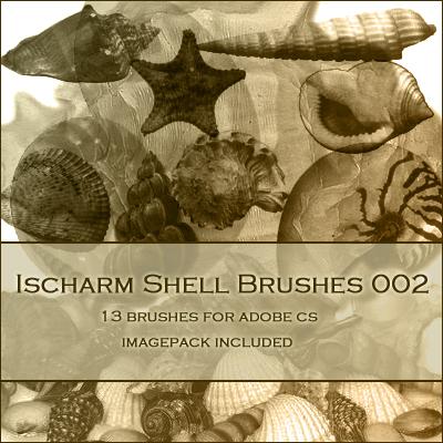 Ischarm Shell Brushes 002