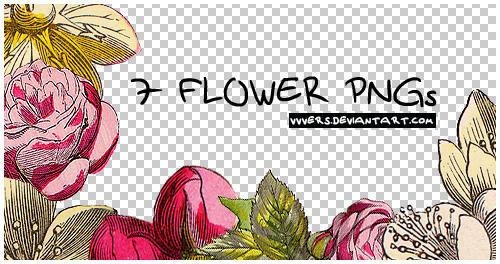 7_flower_pngs_by_vers by vvvers
