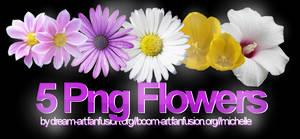 Flower Pngs Pack 1