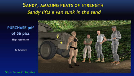 Sandy lifts a van sunk in sand