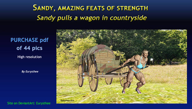 Sandy pulls a wagon in countryside