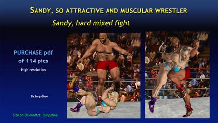 Sandy, hard mixed fight