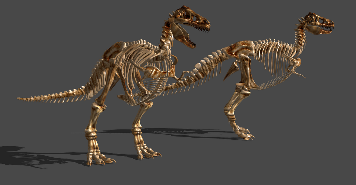 TREX SKELETON by Oo-FiL-oO