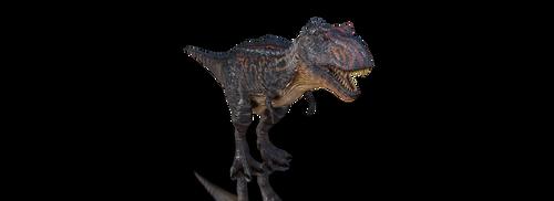 Alpha Rex