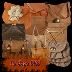 10 Brown Bags PNG