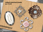 Brooches + Jewels