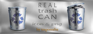 Real Trash Can by trapoeraba