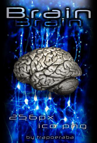 Brain by trapoeraba