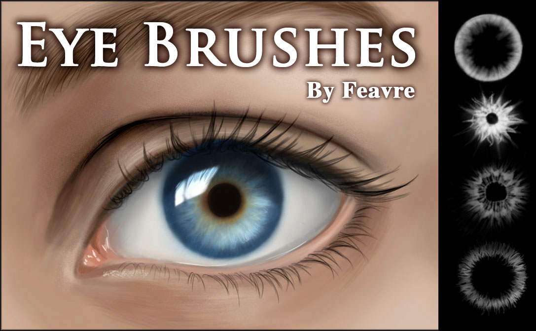 eyebrow brushes photoshop. eye iris brushes by feavre eyebrow photoshop
