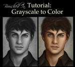 Grayscale to Color painting Tutorial
