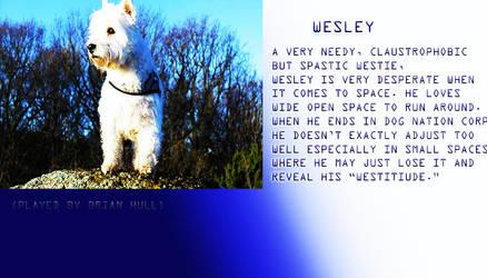 Wesley Profile