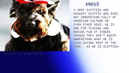 Angus Profile
