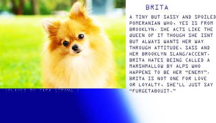 Brita Profile