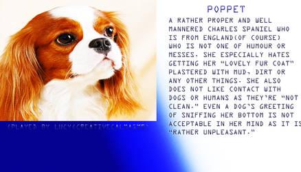 Poppet Profile