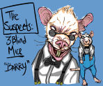3 blind mice - homework