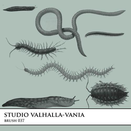 brush.037 by valhalla-vania-brush