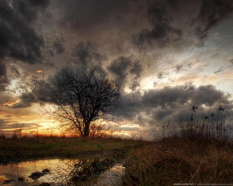 Under a steel sky WP by realityDream