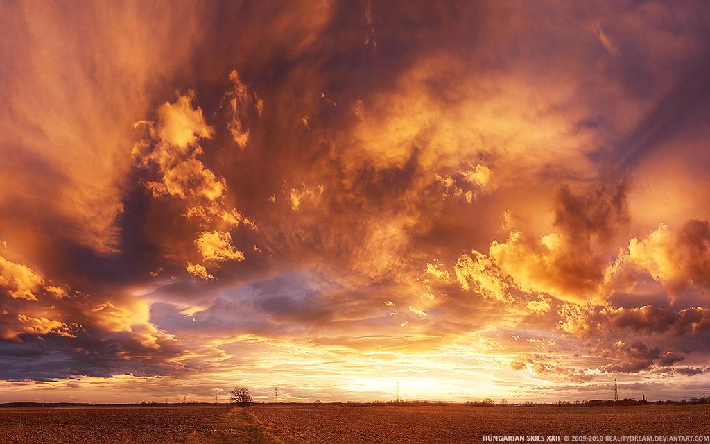 Skies скачать торрент