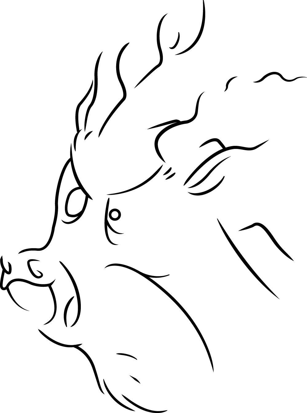 Rydel's Art - Page 4 Discord_by_rydelfox-d4iart5