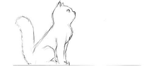 Cat Jump (animation test)
