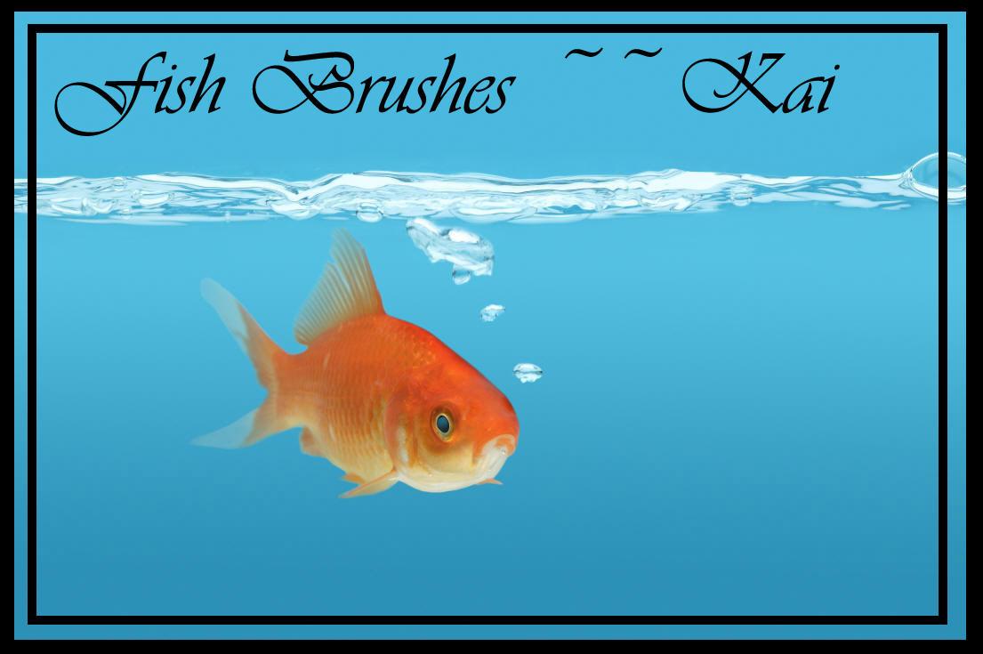 Fish Brushes by KaiPrincess