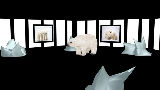 MMD Polar Bear Stage