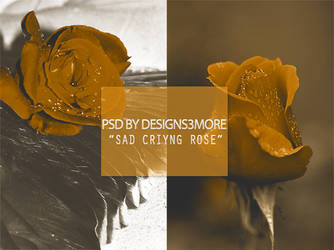 Psd By Designsnd More 33