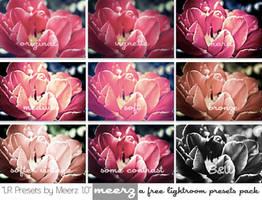 LR Presets by Meerz 1.0 by xmeerzx